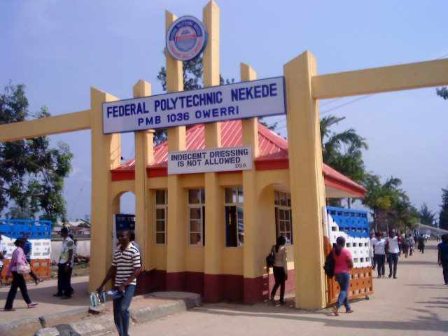 The Best Polytechnics In Nigeria And Courses Offered