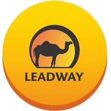 leadway insurance