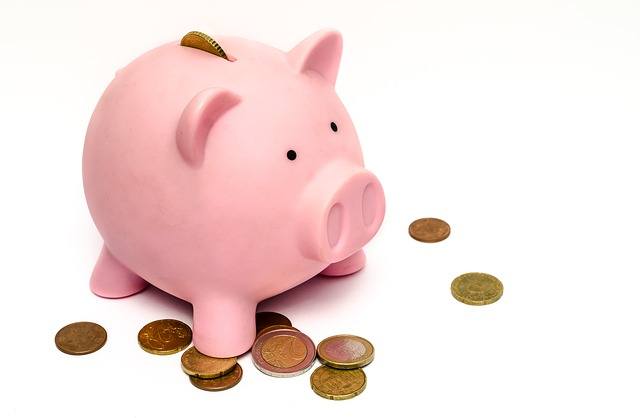 Managing Your Salary in January